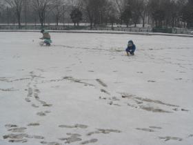 冬・雪遊び